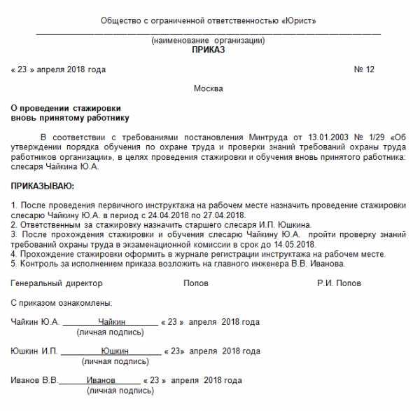 образец приказ о назначении водителя-наставника